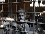 52 حكماً بالإعدام ضد الاحداث في اليمن