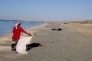 مفوضية شؤون اللاجئين تستنكر مصرع لاجئين قبالة ساحل اليمن